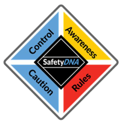 safetydna training
