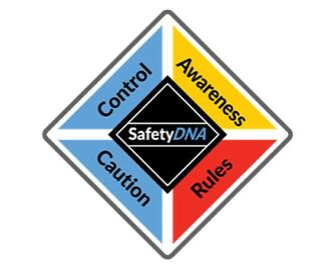safetydna-diamond.jpg